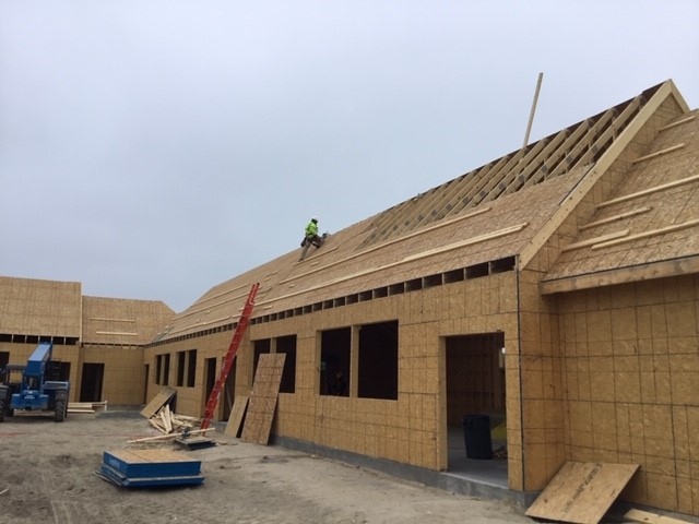 Roofer nailing plywood on roof